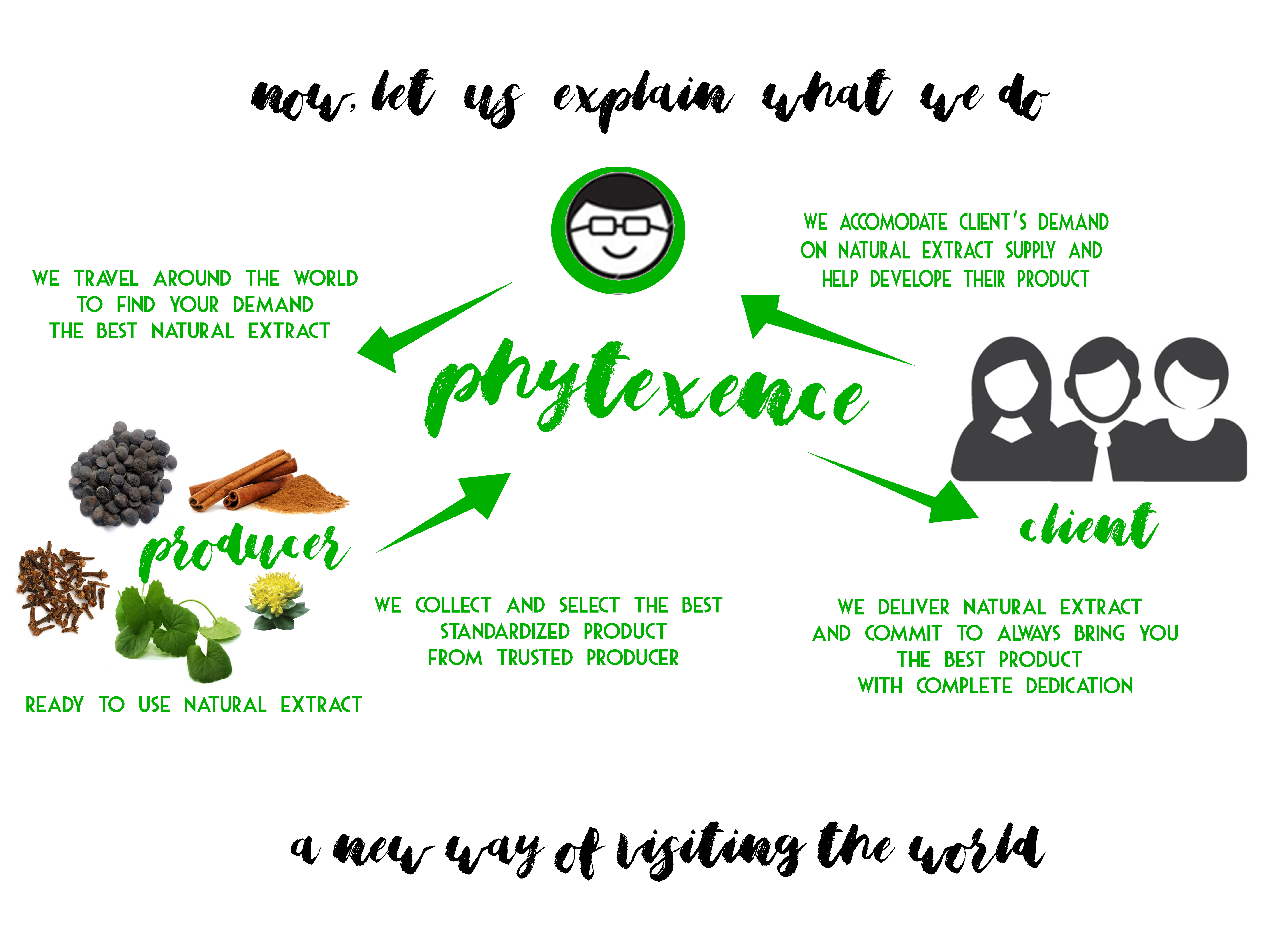 cycle-phytexence-what-we-do
