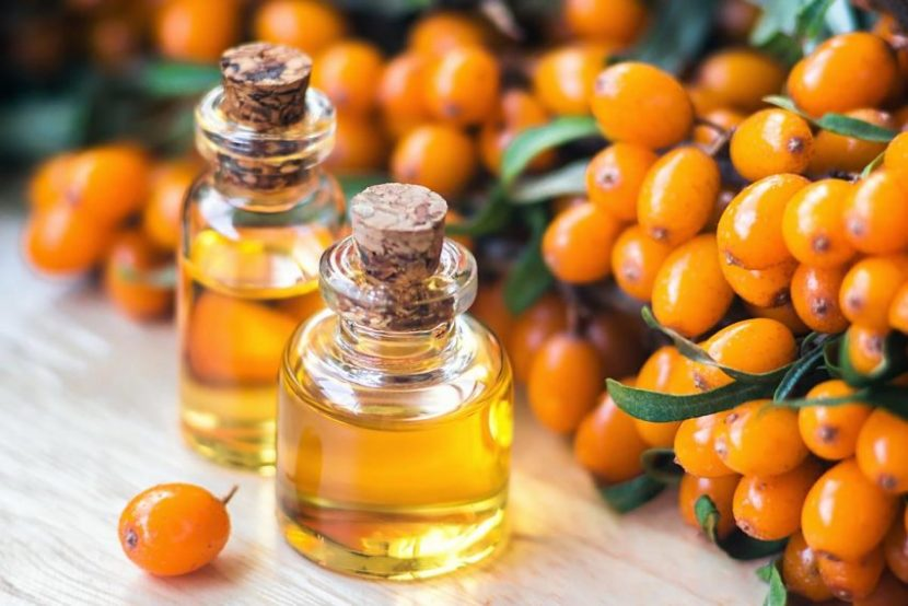 Potential health benefits of Sea buckthorn oil - Phytexence